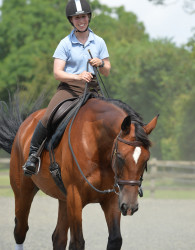 Sally Brett riding with Luis Lucio Olympic dressage coach