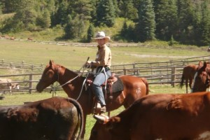 Sally Brett riding with cattle in Colorado