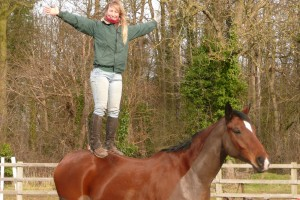 Standing on horse's back, creating confidence using natural horsemanship in Shropshire