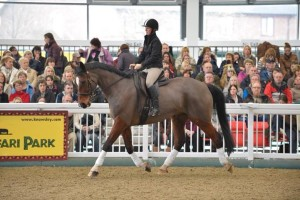 Ridden Parelli Natural Horsemanship demo at Aintree