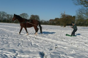 Snow boarding using natural horsemanship
