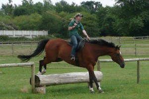 Sally Brett Jumping bridleless using natural horsemanship