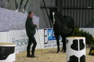 Sally Brett - Demo at Your Horse Live event, Stoneleigh Park